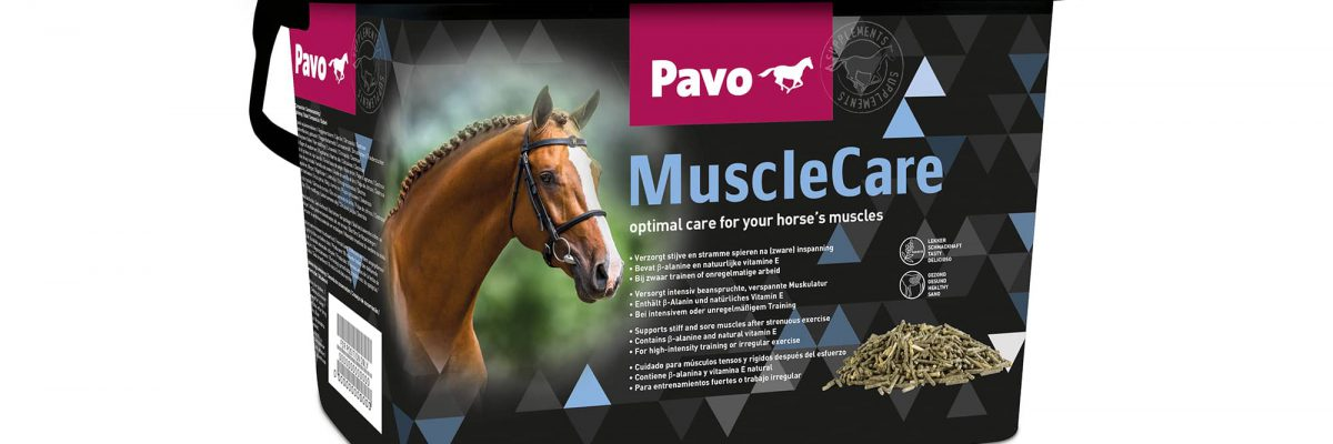 pavo-musclecare